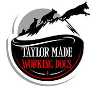 Taylor Made Working Dogs